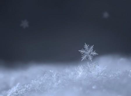 WExplain.ru - Почему снег белый?