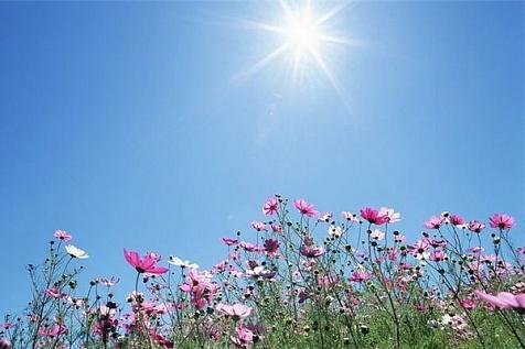 WExplain.ru - Почему небо голубое?