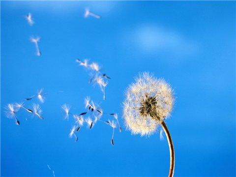 Почему дует ветер?