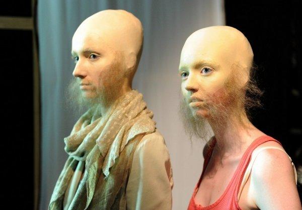 WExplain.ru - Почему у женщин нет бороды и усов?