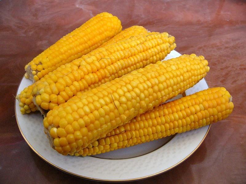WExplain.ru - Как варить кукурузу?