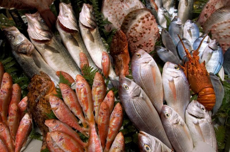 """WExplain.ru - Почему четверг называют """"рыбным"""" днем?"""