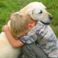 """Почему """"Собака - друг человека""""?"""
