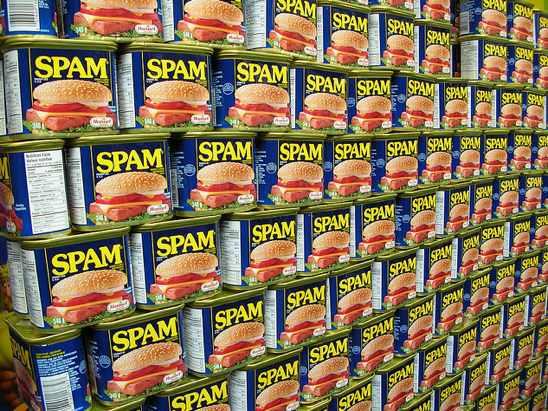 WExplain.ru - Откуда произошло слово спам (SPAM)?