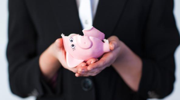 WExplain.ru - Почему копилка обычно в виде свиньи?
