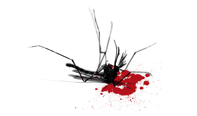WExplain.ru - Почему умирают комары?
