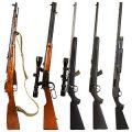Какое ружье выбрать начинающему охотнику?